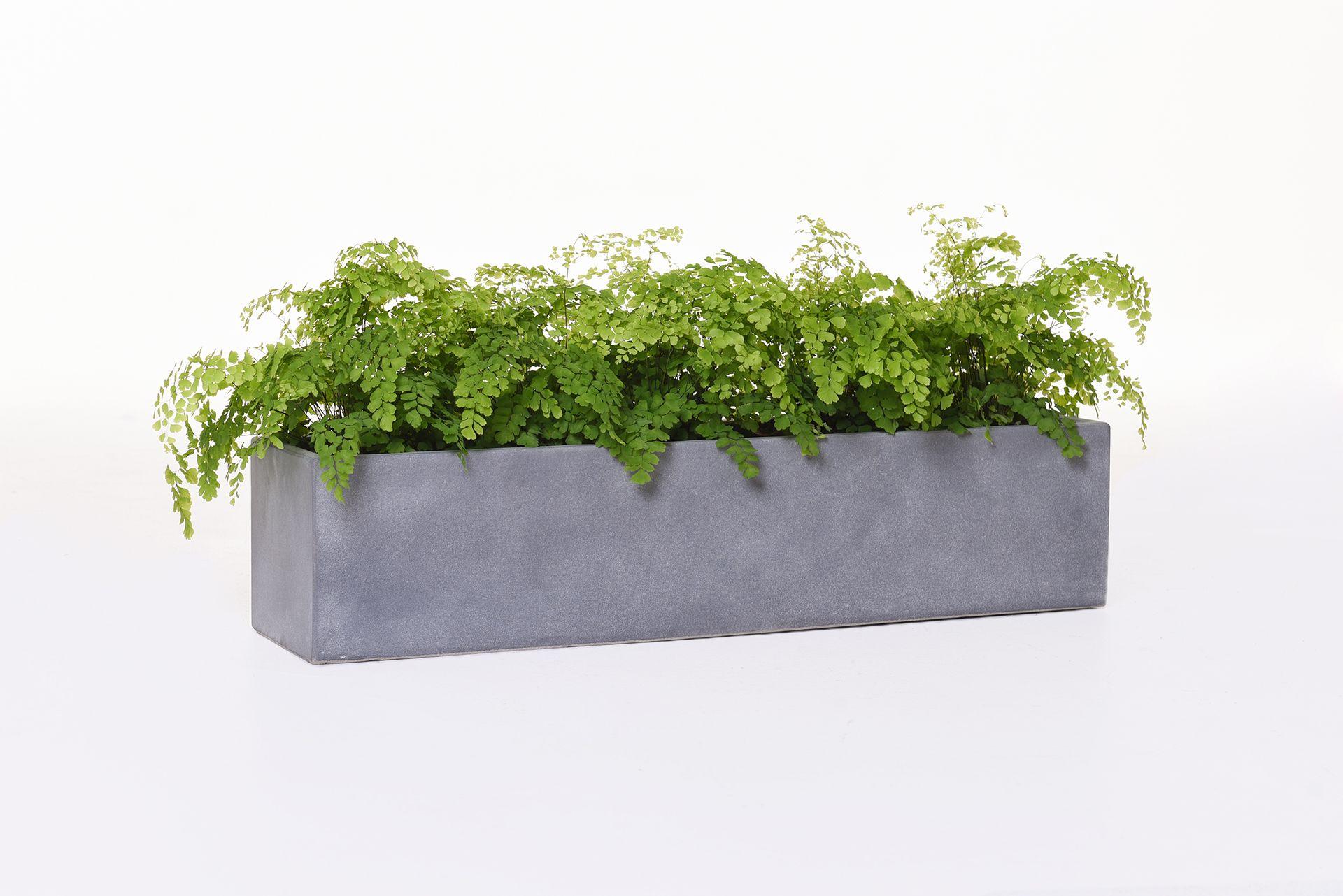 "blumenkasten balkonkasten pflanzkasten aus beton ""flobo"", 80 cm grau"