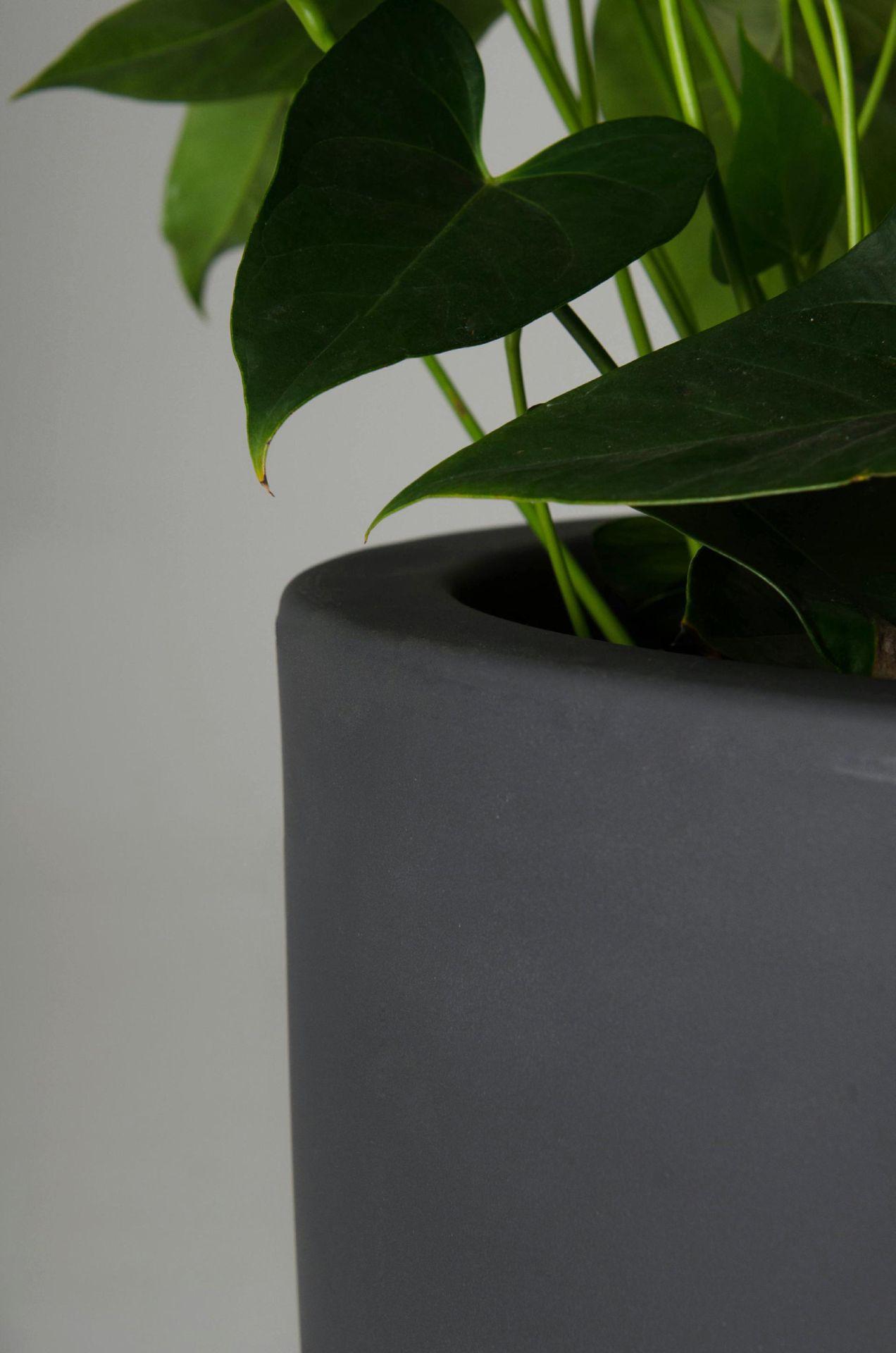 pflanzk bel blumenk bel pflanzs ule city aus kunststoff. Black Bedroom Furniture Sets. Home Design Ideas