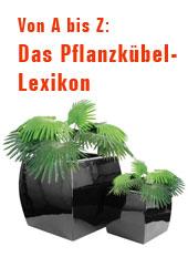 Das Pflanzkübel-Lexikon