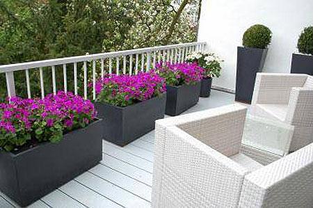 Balkon Pflanzkübel.Der Hit Des Sommers Pflanzkübel Für Dachterrasse Und Balkon