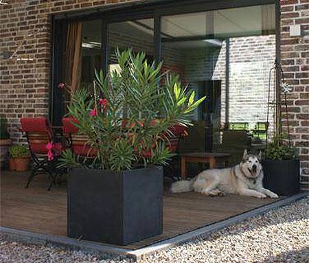 Hervorragend Der Hit des Sommers: Pflanzkübel für Dachterrasse und Balkon  JU87