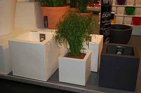besuch auf der spoga in k ln pflanzk bel blog von ae trade. Black Bedroom Furniture Sets. Home Design Ideas