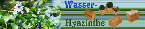 AE Trade-Shop für Produkte aus Wasserhyazinthe