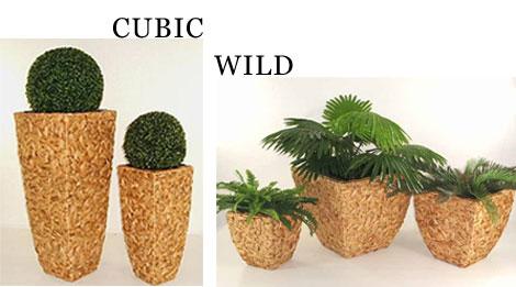 Pflanzkübel Wasserhyazinthe Cubic und Wild