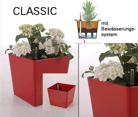 Blumenkübel aus Kunststoff: das Modell classic mit Rollen und ...