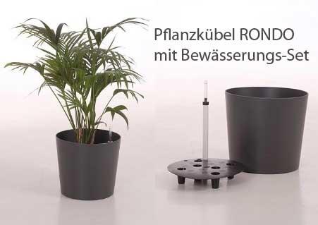 Pflanzkübel-Materialien: Polypropylen ist kein Billig-Plastik ...