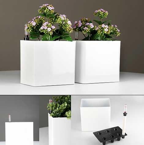 innovativer blumentopf mit integriertem bew sserungssystem erspart das gie en pflanzk bel blog. Black Bedroom Furniture Sets. Home Design Ideas