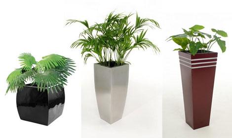 Pflanzkübel-Trend 2014: Interessant gestaltete Oberflächen ...