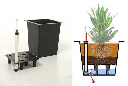 Kübelpflanzen-Bewässerungssystem mit Überlauf erspart auch draußen ...