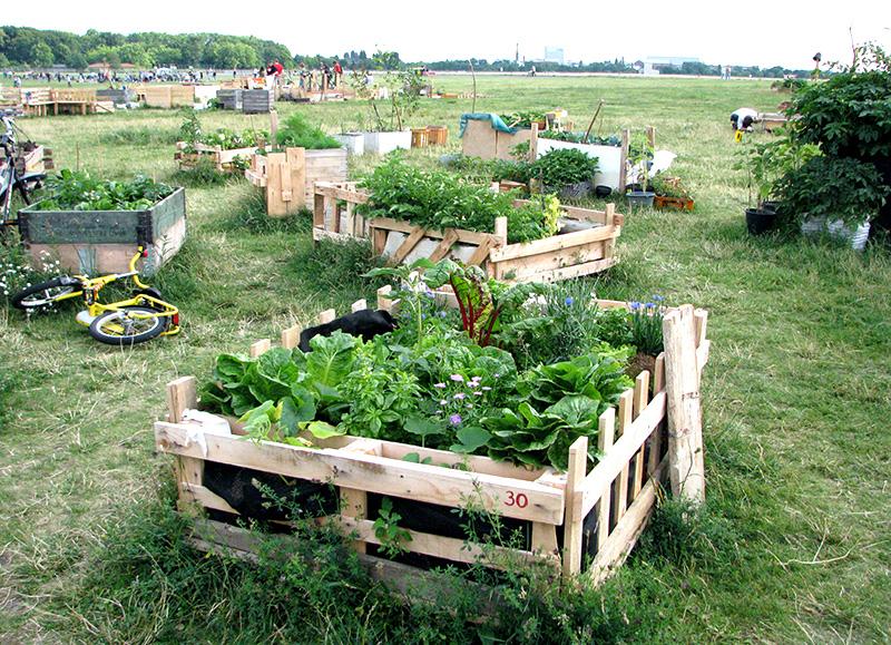 Urban gardening balkon urban gardening auf dem balkon urban farming eigene biofarm auf dem - Bayerische bauordnung gartenhaus ...