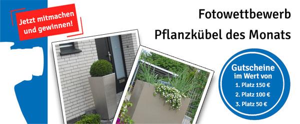 Fotowettbewerb Planzkübel des Monats