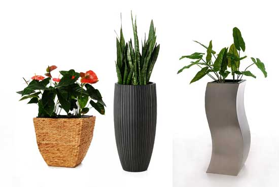Blumenkübel ASIA, ARTOS und WAVE aus Wasserhyazinthe, Fiberglas und Edelstahl