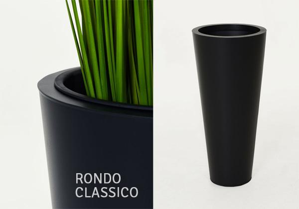 Rondo Classico