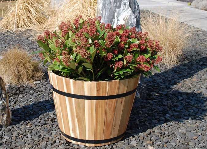 Neu: Pflanzkübel aus dem Holz der Akazie » Pflanzkübel-Blog von AE ...