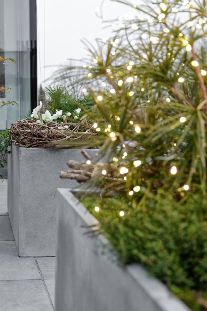 Pflanzkübel mit Lichterkette auf Terrasse