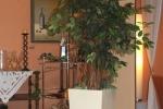 Blumenkuebel_Aggertal-Hotel_3_web