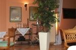 Blumenkuebel_Aggertal-Hotel_4_web