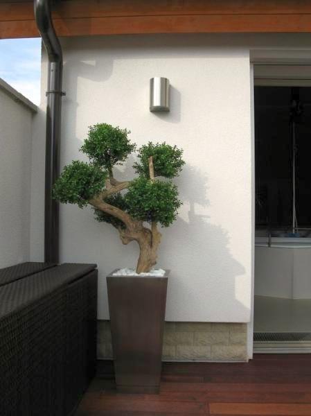 Pflanzkübel Classic aus Edelstahl
