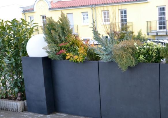 Winterliche Bepflanzung und ein stilvolles Lichtelement erhellen jede Wintertristesse.