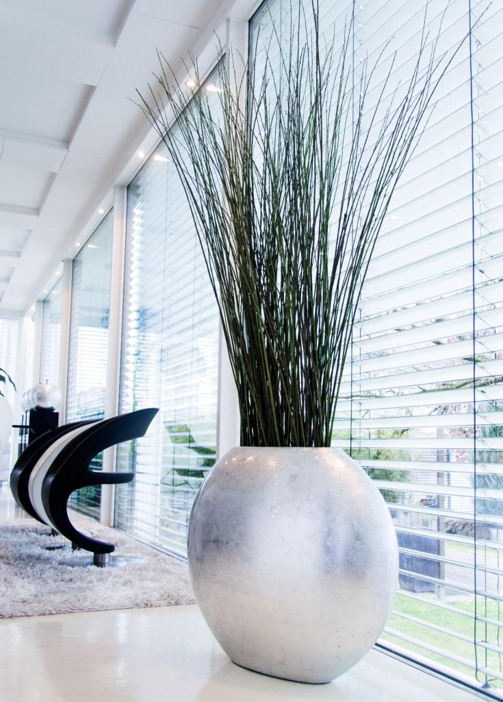 Pflanzkübel OVALE vor einer Fensterfront